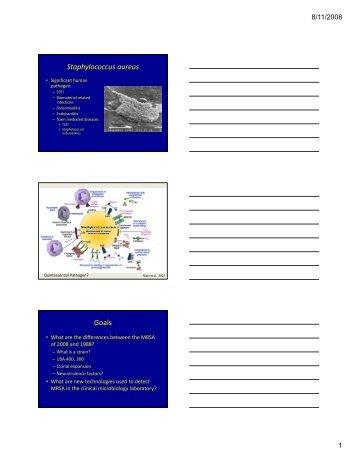 3 slides per page, PDF