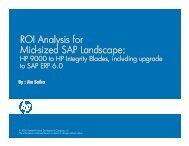 sized SAP Landscape - IDG