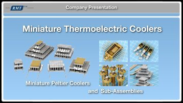 Company Presentation 2011 - RMT Ltd