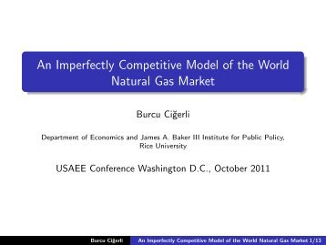 An Imperfectly Competitive Model of the World Natural Gas Market