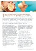 The 2008 Farm Bill: Making an impact through NIFA - National ... - Page 5