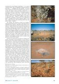 Regolith–landform mapping in the Gawler Craton - MISA - Page 3