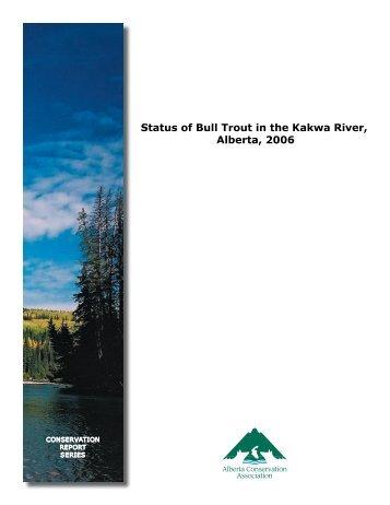 Status of Bull Trout in the Kakwa River, Alberta, 2006