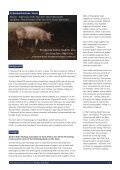 Download a copy of the full report - Animal Aid - Page 3
