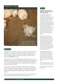 Download a copy of the full report - Animal Aid - Page 4