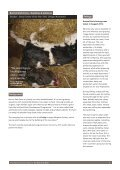 Download a copy of the full report - Animal Aid - Page 6