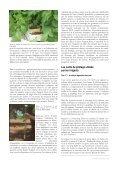 telecharger l'article en pdf - Jejardine.org - Page 2
