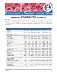 presupuesto de producción – rambutan - Cuenta del Milenio ...