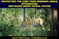 Thailand Protecting Core Breeding Areas MIST - Global Tiger Initiative
