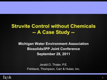 Struvite Control without Chemicals - Michigan Water Environment ...