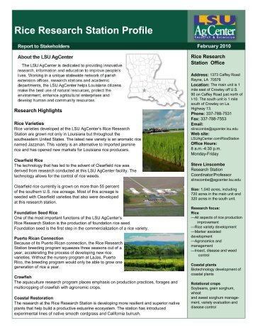 Rice Research Station Profile