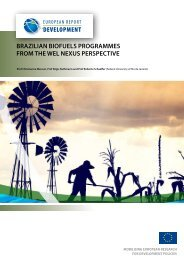 Brazilian Biofuels Programmes from the WEL Nexus Perspective