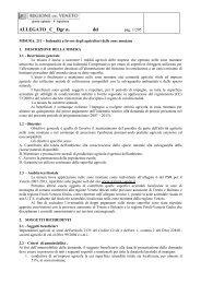 Cr 121 Allegato C - Pdconsiglioveneto.org