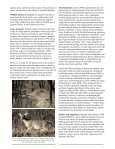PDF version - College of Natural Resources and Environment - Page 5