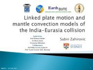 Linked plate motion and mantle convection models of the India ...