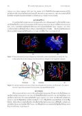 Study on Papain Isolation and Purification by Covalent ... - CRDC - Page 2