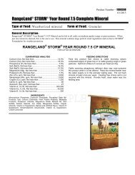 RangeLand Storm Year Round 7.5 CP Mineral - Beeflinks