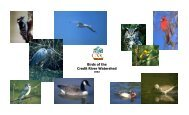 Birds of the Credit River Watershed - Credit Valley Conservation