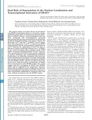 Dual Role of Sumoylation in the Nuclear Localization and ...