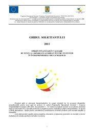 Ghid_Investitii_Mici_pt_IMM-uri_nov_2011 - Agentia pentru ...
