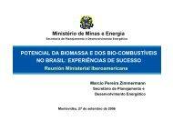 POTENCIAL DA BIOMASSA E DOS BIO-COMBUSTÍVEIS ... - unido