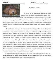 Lecture et compréhension: Le castor - Pass Education