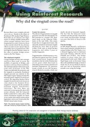 Why did the ringtail cross the road?