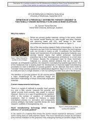 Download the full problem description - Mathematics in Medicine ...
