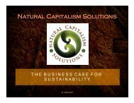 Hunter's slides - Natural Capitalism Solutions