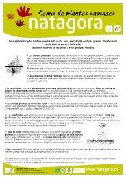 fiche NATAGORA NAJ semis BIL 080509