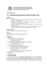1 UNIVERSIDAD NACIONAL DEL LITORAL FACULTAD DE ...