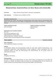 Wasserschloss: Zusammenfluss von Aare, Reuss und ... - admin.ch