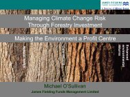 Managing Climate Change Risk through Forestry Investment Making ...