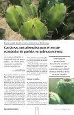 Pitaya, jiotilla y xoconostle, opciones para mejorar - UAM ... - Page 4