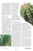 Pitaya, jiotilla y xoconostle, opciones para mejorar - UAM ... - Page 5