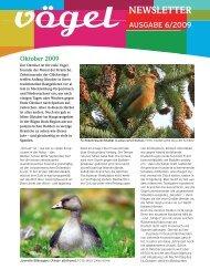 Newsletter 6/09 Oktober–November - Vögel - Magazin für ...