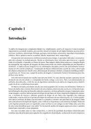 Capítulo 1 Introdução - banon-pc:1905