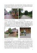 Slovensko-Polsko 2012 - Page 5
