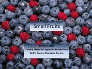 Small Fruits - Bullitt County Cooperative Extension