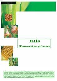 tableau comparatif maïs 2010 - MOMONT