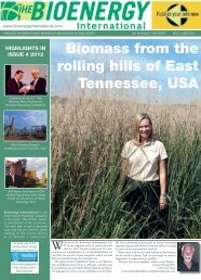 Biomass from the rolling hills of East Tennessee, USA - Novator