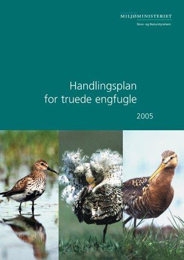 Handlingsplan for truede engfugle - Naturstyrelsen