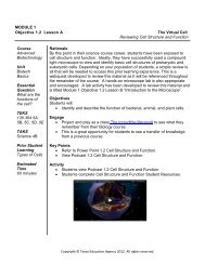 The Virtual Cell-Reviewing Cell Structure and Function - Career and ...