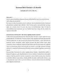 Kurumsal Risk Yönetimi ve İç Denetim - Denetimnet.Net