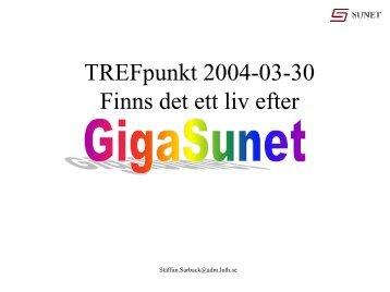 Presentation av SUNETs framtidsgrupp och dess - SUNET-projekt mm