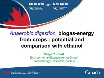 Anaerobic digestion: Bio-energy for our future - Renewable Energy ...