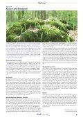 Jahresbericht 2007 des Landesverbandes - BUND Kreisgruppe ... - Seite 4