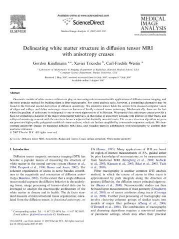 Delineating white matter structure in diffusion tensor MRI with ...