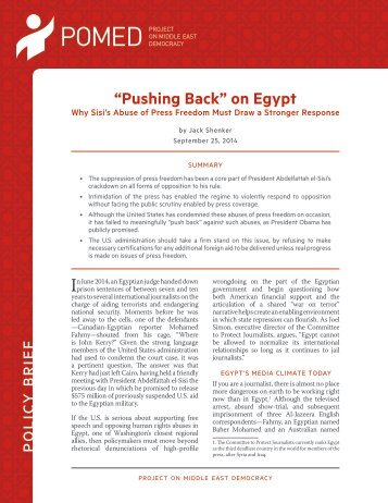Policy-Brief-Shenker-Sept-2014