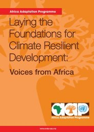 Report - Africa Adaptation Programme